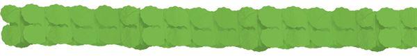 Kiwi Grün - Papiergirlande