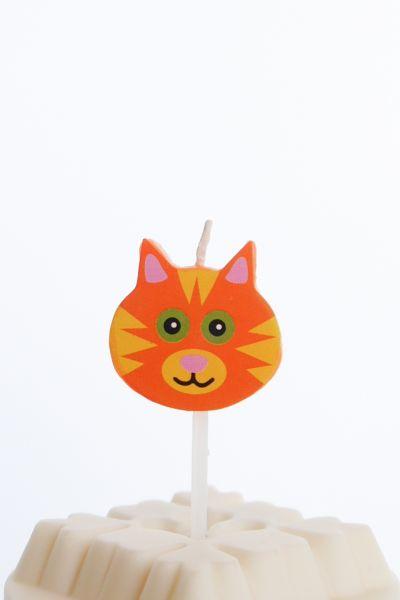 Kerze Katze