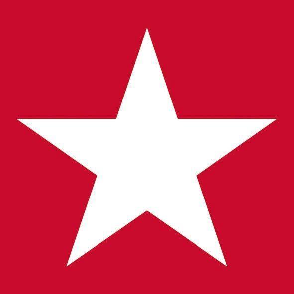 20 Servietten Stern Rot/Weiß