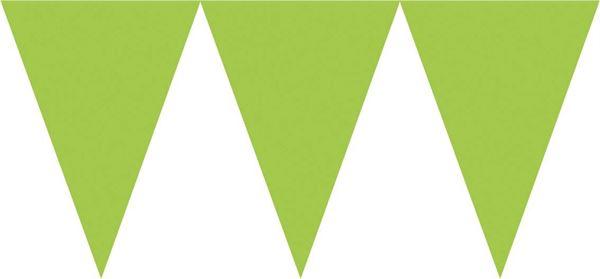 Kiwi Grün - Wimpelkette